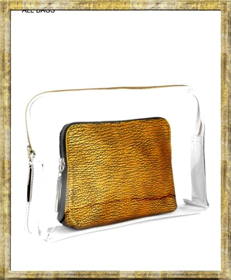 phillip lim clear transparent clutch